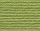 Vanna's Choice Baby Yarn - Sweet Pea Green.  For Yarn Wrapped Letters and Afghan!