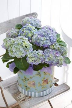 2f6fb317815 48 Best Hydrangea (purple) images