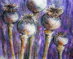 https://flic.kr/p/dWVXyR | POPPY SEED PODS..PLAY..MIXED MEDIA | POPPY SEED PODS..PLAY..MIXED MEDIA After all that serious Poppy card painting I just wanted to play and sort of throw some paint on some paper....paint and a few other things...including Ink, Elegant Writer Pen, Watercolor & Pastel. Painting Poppies always reminds me of the seed pods I love too...♥