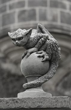 """don't insult the gargoyle. and don't call it cute. it will bite your finger off"""