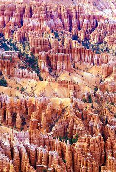 Bryce Canyon, Utah - US