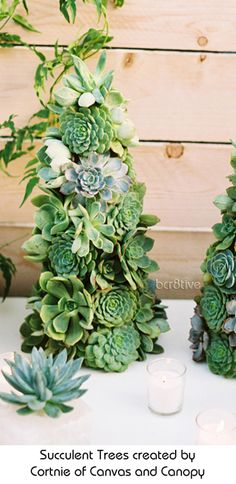 Succulent Xmas Trees created by Cortnie of Canvas and Canopy http://greenweddingshoes.com/a-modern-cali-christmas-party/