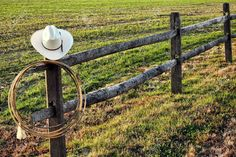 Image result for history of ranch fence type