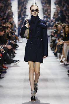 Dior Fall 2016 RTW