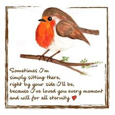 Little Red Robins 7 - Linda Minto Dad In Heaven Quotes, Messages From Heaven, One Sentence Quotes, Red Robin Bird, In Loving Memory Quotes, Remembrance Day Art, Loved One In Heaven, I Love My Brother, Bird Quotes
