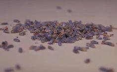Zutaten für 1 Liter Limonade:      3 EL getrockneter Lavendel (entspricht in etwa 30 g) 1 Liter Wasser (je nach Belieben mit oder ohne Kohlensäure) 2 Zitronen (aus biologischem Anbau) 1 EL Honig eine Handvoll Eiswürfel einen großen Krug