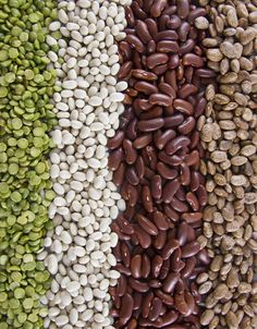 Healthy Eating 101: Getting Creative with Dried Beans