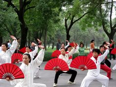 Tai Chi fan ladies