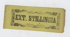 Shaker Ext. Stillingia