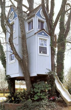 Cool Treehouse