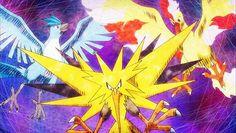 Las tres aves legendarias