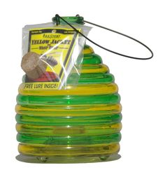 Glass Wasp Trap Instructions
