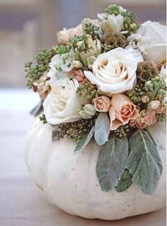 so soft and pretty, love the white pumpkins too!!