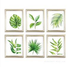 Tropical Art Tropical Plant Wall Art Palm Wall Art Monstera Plant Leaf Print Plant Art Leaf Print Leaves Art Palm Print Set of 6 Prints by AldariArt on Etsy