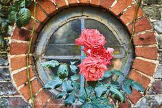 Secret gardeners: Jeremy Irons
