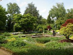 Botanischer Garten Golf Courses, Vineyard, Outdoor, Linz, Road Trip Destinations, Hiking, Plants, Lawn And Garden, Outdoors