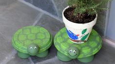 Terracotta Clay Pot Turtles