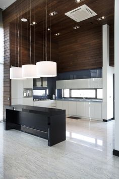 Villa Kiani / Makan Rahmanian and Kamran Heirati.  Awesome contrast with the dark rustic woods to the sleek modern kitchen.  Just wish those lights and vent weren't so glaringly obvious!