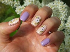 Lilac & Flowers