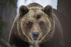 Photo face to face par Stephane Leroy on 500px