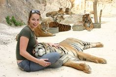 The Tiger Temple in Kanchanaburi Thailand. Picture with a Big Cat.