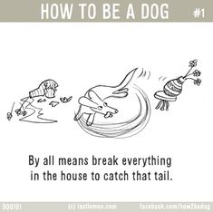 Illustrations Every Dog Owner Will Understand Dog Doggies - 10 funny illustrations every dog owner will relate to