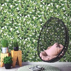 Roommates Palm Leaf Botanical Tropical Green Boho Peel and Stick Wallpaper DIY Vinyl Wallpaper, Wallpaper Roll, Peel And Stick Wallpaper, Palm Wallpaper, Peelable Wallpaper, Office Wallpaper, Tropical Wallpaper, Green Wallpaper, Modern Country