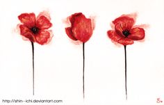 Poppies by Shin--Ichi.deviantart.com on @deviantART