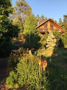 Come stay in the cool pines of Flagstaff, AZ at www.logcabinhomevacation.com #logcabin #ski #bucketlist #grandcanyon #vacationrental #travel #home #flagstaff