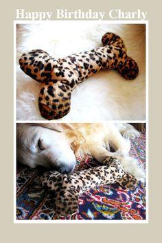 Dog Toy DIY