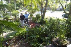 Florida-Friendly Landscaping design idea.