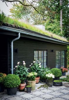 200 Black Shed Exterior Makeover - Nesting With Grace Black Shed, Landscape Design, Garden Design, Scandinavian Garden, Exterior Makeover, Terrace Garden, Garden Seating, Garden Grass, Green Plants