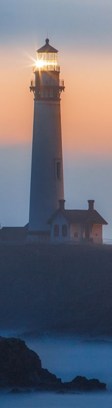 I stood here photographing Pigeon Point Lighthouse on the edge of a cliff on the… Beacon Tower, Ocean Scenes, Pacific Coast Highway, California Dreamin', Bird Watching, Lighthouse, Most Beautiful Pictures, In The Heights, Profile