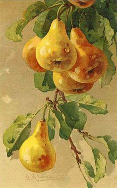 Poires dorées / painting by Catherine Klein