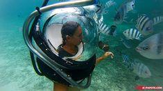 Marche sous l'eau (Aquaventure) à l'Ile Maurice #ilemaurice #mauritius