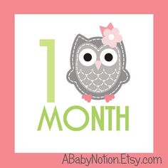 Square owl monthly iron on or sticker decal transfer pink lime green baby girl shower nursery by ABabyNotion on Etsy https://www.etsy.com/listing/120895414/square-owl-monthly-iron-on-or-sticker