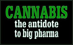 http://www.smokemarijuana.nl