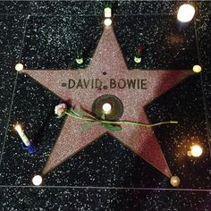David Bowie...Hollywood Walk of Fame  http://jareths-goblin-queen.tumblr.com/post/137089441414