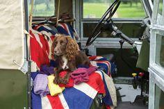 Land Rover Spaniel.