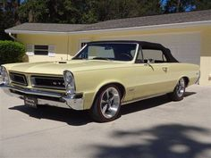 1965 Pontiac GTO! My first car I bought used. It had wire wheels and Mayfield Maze yellow is my all time favorite color.