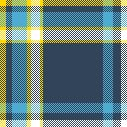 'Shwing' your tartan: digital plaid at your whim!