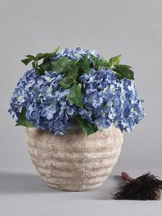 Large pale distressed stone planter filled with blue hydrangeas.