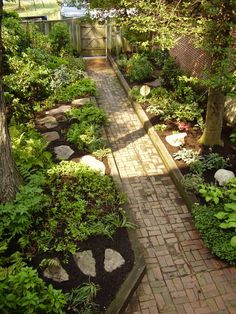 Love this walkway + raised beds. Lush!