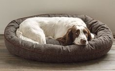 Wraparound Herringbone Dog Bed with Memory Foam She'll love the soft comfort of her memory foam dog bed; you'll love its durable good looks. orvis.co.uk