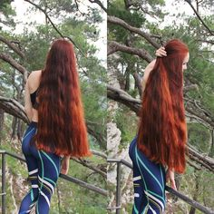 My new hair after the trim. #redhair #redhead #redhaired #ginger #gingerhair #gingergirl #longredhair #verylonghair #hike #hiking #hiker #fitnessgirl #forest #intheforest #outdoor #staywild #naturelover #рыжая #длинныеволосы #рыжиеволосы #оченьдлинныеволосы #природа #лес #горыкавказа #прогулкавлесу #орлиныескалы #поход #фигура #сочи #sochi