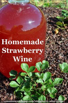 Easy Strawberry Wine Add a little kick to your strawberry season! This homemade strawberry wine recipe comes together in minutes and is ready to enjoy in just a few months. Homemade Wine Recipes, Homemade Alcohol, Homemade Liquor, Moonshine Recipes Homemade, Beer Recipes, Grilling Recipes, Milk Shakes, Easy Strawberry Wine Recipe, Strawberry Moonshine Recipe