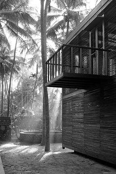 Studio Mumbai I Palmyra house