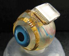 Bionic Eye could provide sight for Stevie Wonder