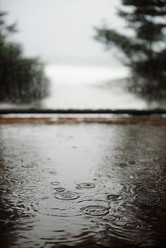 PLUIE | rain does it to me every time. | Flickr : partage de photos !