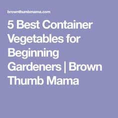 5 Best Container Vegetables for Beginning Gardeners | Brown Thumb Mama